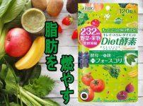 【脂肪を燃やす!】Diet酵素 プレミアムで健康的にダイエット!